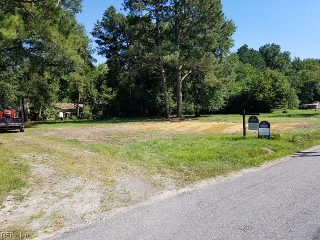 17081 Mt Olive Ave, Isle of Wight County, VA 23487 (#10178047) :: The Kris Weaver Real Estate Team