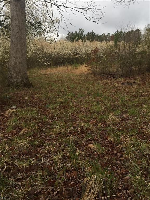 9016 Hobbs Mill Rd, Dinwiddie County, VA 23894 (#10184033) :: The Kris Weaver Real Estate Team