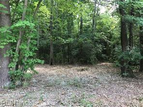 5.64AC Moses Grandy Trl, Chesapeake, VA 23322 (#10189206) :: Resh Realty Group