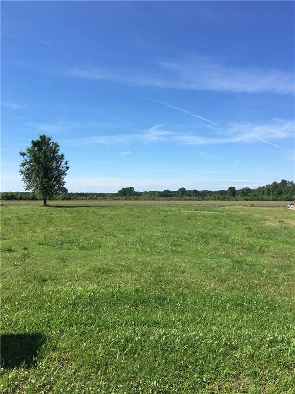 LOT 19 Deloatche Ave, Southampton County, VA 23827 (#10195651) :: Reeds Real Estate