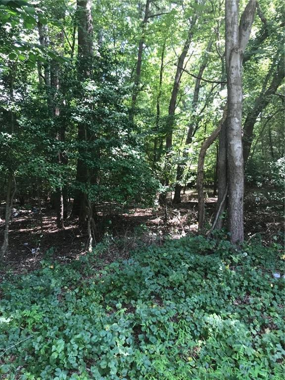 12217 Smiths Neck Rd, Isle of Wight County, VA 23314 (#10211543) :: Abbitt Realty Co.