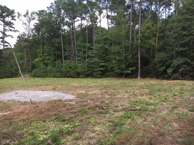 .44AC Virginia Ave, Isle of Wight County, VA 23487 (#10216186) :: Coastal Virginia Real Estate