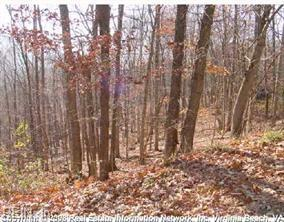 Lot 12 Maple St, Suffolk, VA 23435 (#10261739) :: Momentum Real Estate