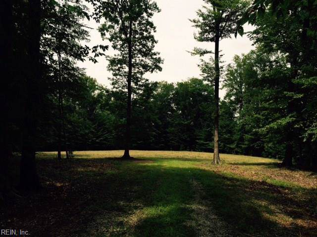 51 Ac Swanns Point Rd, Surry County, VA 23881 (MLS #10288431) :: Chantel Ray Real Estate
