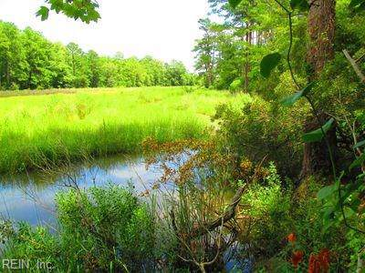 6+ACR Low Ground Rd, Gloucester County, VA 23072 (#10290002) :: Abbitt Realty Co.
