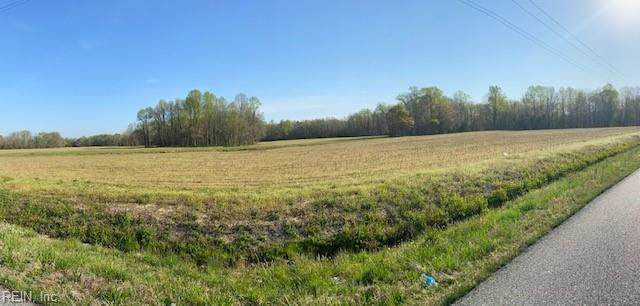 13.99 Ac Wildwood Dr, Suffolk, VA 23437 (#10331654) :: Berkshire Hathaway HomeServices Towne Realty
