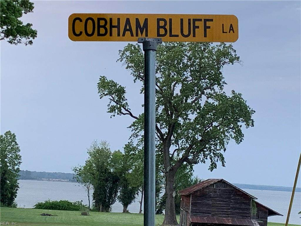 Lot 7 Cobham Bluff Ln - Photo 1