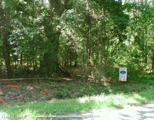 19.5AC Fort Huger Dr, Isle of Wight County, VA 23430 (#1342626) :: Abbitt Realty Co.