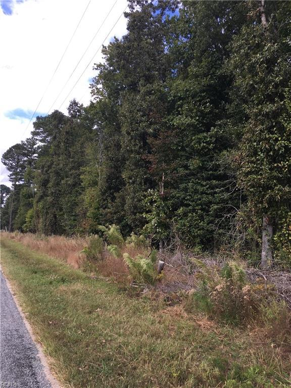 9.2 Ac Cypress Chapel Rd, Suffolk, VA 23434 (#10222312) :: Berkshire Hathaway HomeServices Towne Realty