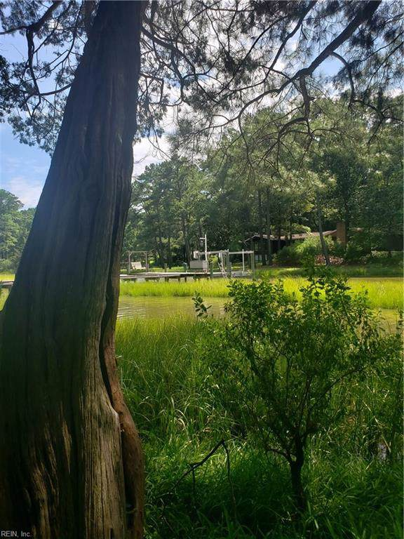 645 Piney Point Rd, Virginia Beach, VA 23452 (#10272000) :: Rocket Real Estate