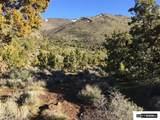 00 Quaking Aspen - Photo 15
