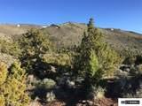 00 Quaking Aspen - Photo 16