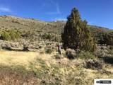 00 Quaking Aspen - Photo 21