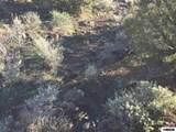 00 Quaking Aspen - Photo 7