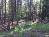 Hwy 89 83.75 Acres - Photo 14