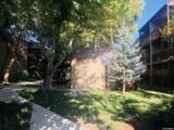2955 Lakeside - Photo 7
