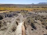 5935 Zimmerman Ranch Rd. - Photo 10