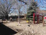 4056 Mina Way - Photo 7