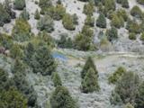 4730 Lost Burro Road - Photo 13