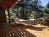 300 Blue Spruce Rd - Photo 21