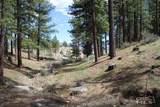725 Kelly Canyon - Photo 3