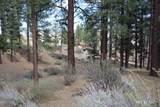 725 Kelly Canyon - Photo 6