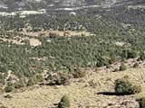 LOT 184S-40S Nw4ne4-S2/17N/21E Virginia Ranches - Photo 3