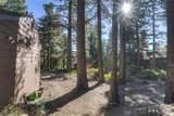 405 Black Pine Court - Photo 7