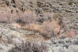 53 Mule Deer Ct - Photo 12