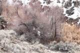 53 Mule Deer Ct - Photo 17