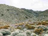 1305 Freds Mountain - Photo 1