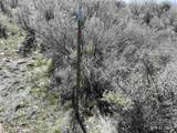 12275 Churchill Trail - Photo 2