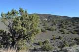 0 Quaking Aspen #8 - Photo 10