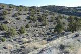 0 Quaking Aspen #8 - Photo 11