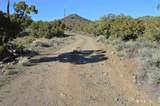 0 Quaking Aspen #8 - Photo 7