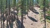 270 & 300 Timber - Photo 33
