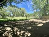 1224 Palo Verde - Photo 19