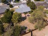 230 Date Palm Dr. - Photo 15