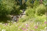 215 Cedar Ridge - Photo 7