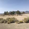 50 Desert View Drive - Photo 11