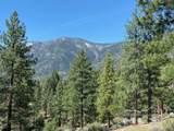 3547 Cutoff Trail - Photo 4