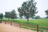 1951 Mountain Vista Way - Photo 34