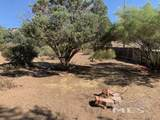 15236 Pinion Drive - Photo 8