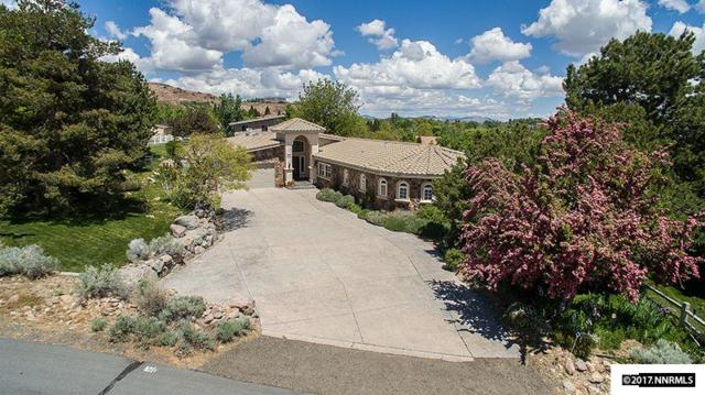 3605 Frost Lane, Reno, NV 89511 (MLS #170006747) :: The Mike Wood Team