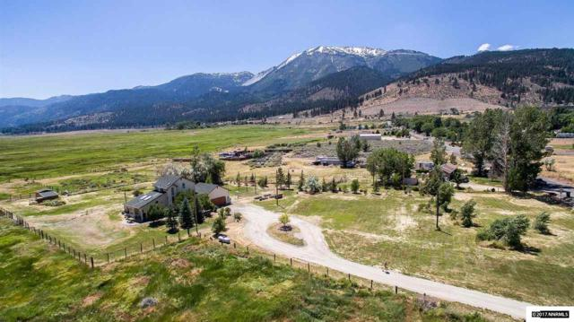 850 Old Ophir, Washoe Valley, NV 89704 (MLS #170009308) :: The Mike Wood Team