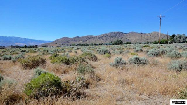 2740 East Valley Rd, Minden, NV 89423 (MLS #170010416) :: The Matt Carter Group   RE/MAX Realty Affiliates