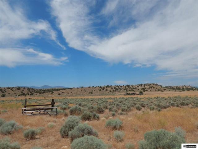 2980 Juniper Valley Ranch Road, Minden, NV 89423 (MLS #170011033) :: The Matt Carter Group   RE/MAX Realty Affiliates