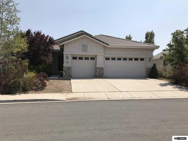 10092 Cascade Falls Drive, Reno, NV 89521 (MLS #170013129) :: Harcourts NV1