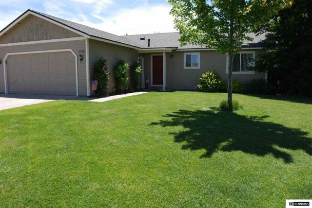 1355 Patricia Drive, Gardnerville, NV 89460 (MLS #170014067) :: Chase International Real Estate