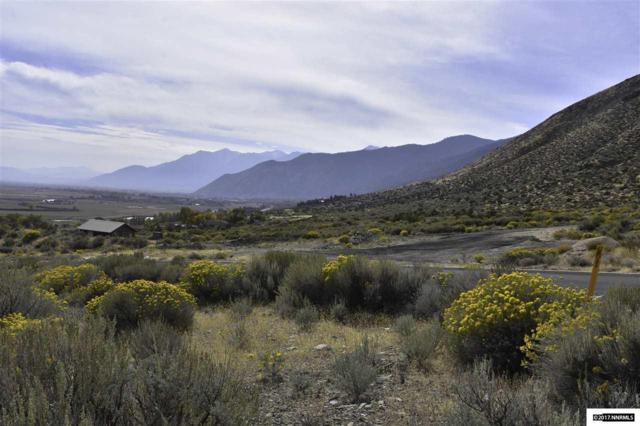 255 James Canyon, Genoa, NV 89411 (MLS #170015268) :: RE/MAX Realty Affiliates